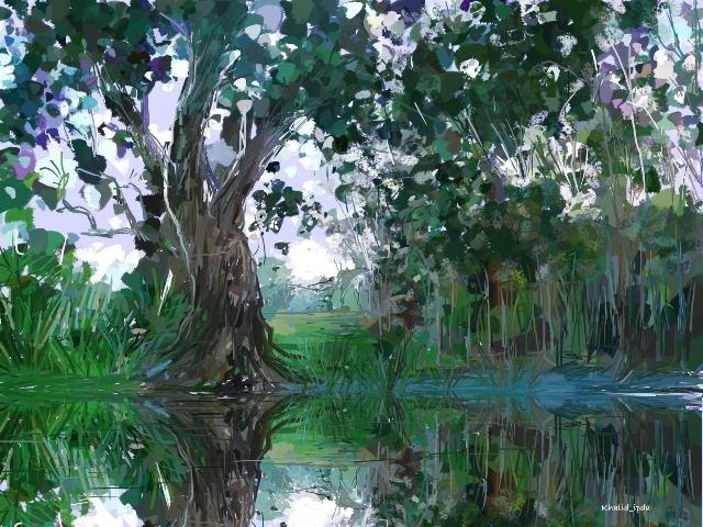 Khalid Ipda U0026 39 S Gallery  Trees And Water Reflection
