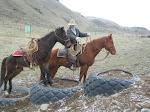 Hannah on tires