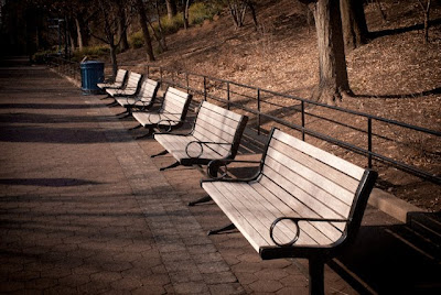 benches in winter, national zoo