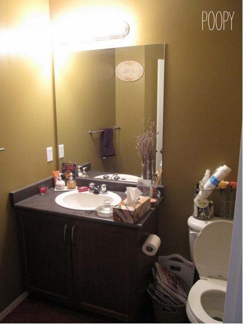 Luckybydesign bathroom redesign for Bathroom redesigns