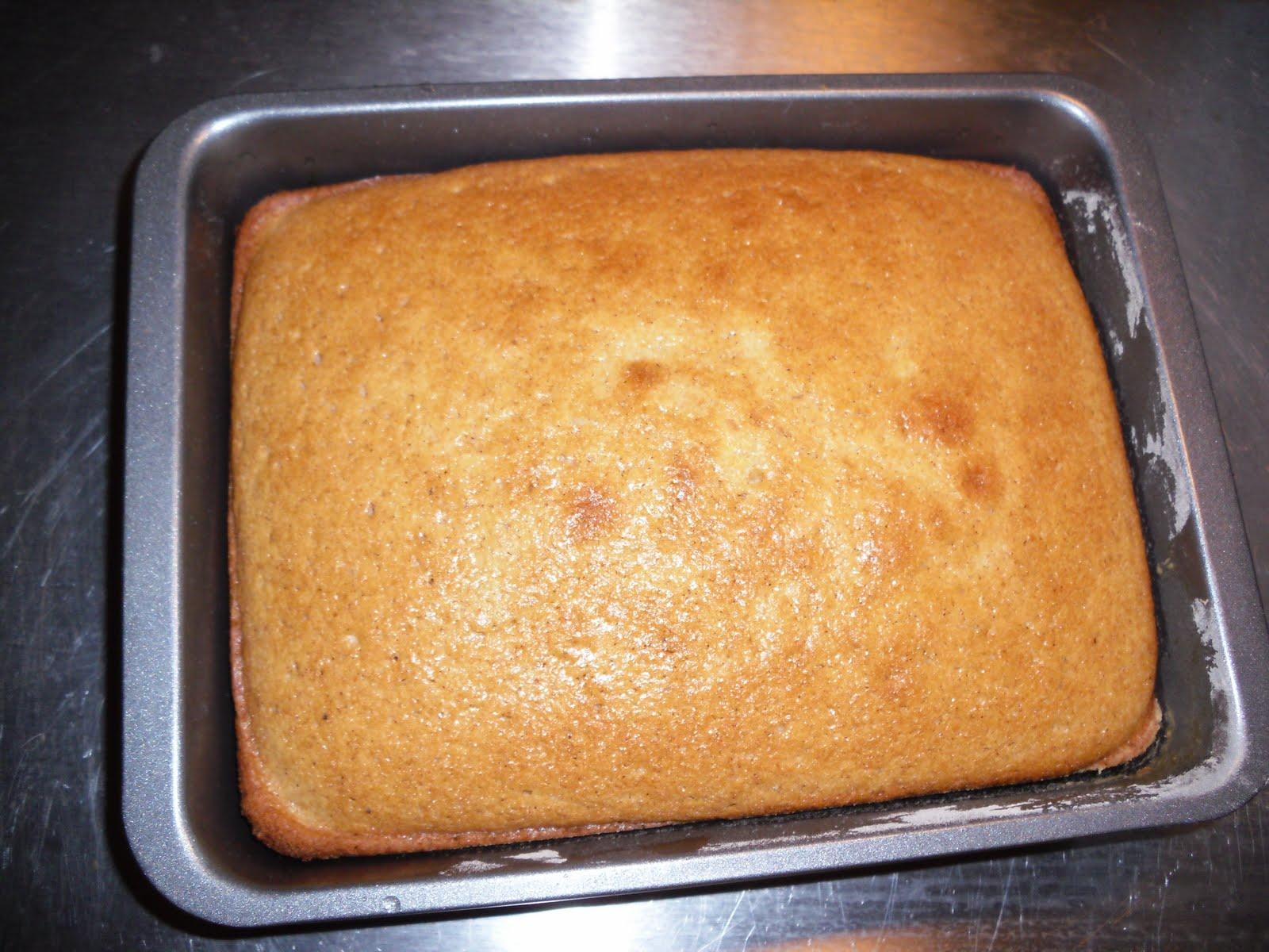 Make A Roaster Pan A Kitchen Sink