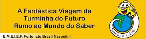 F. Naspolini