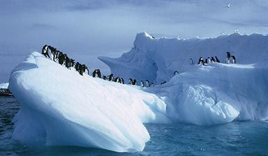 Lapisan Barat Kutub Selatan