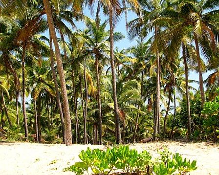 Mattu Beach - Udyavara