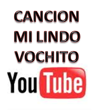 VIDEO MI LINDO VOCHITO