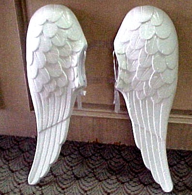 Britains latest 'hazard' - Angel Wings. The latest fiasco to come from the ...