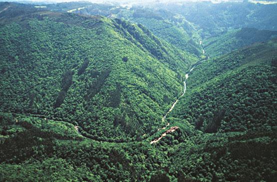 S ptimo b sico segundo semestre fuerzas exogenas de la tierra for Pisos en montornes del valles