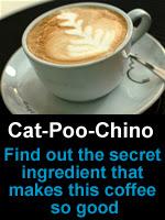 Cat-Poo-Chino
