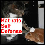 Kat-rate Self Defense