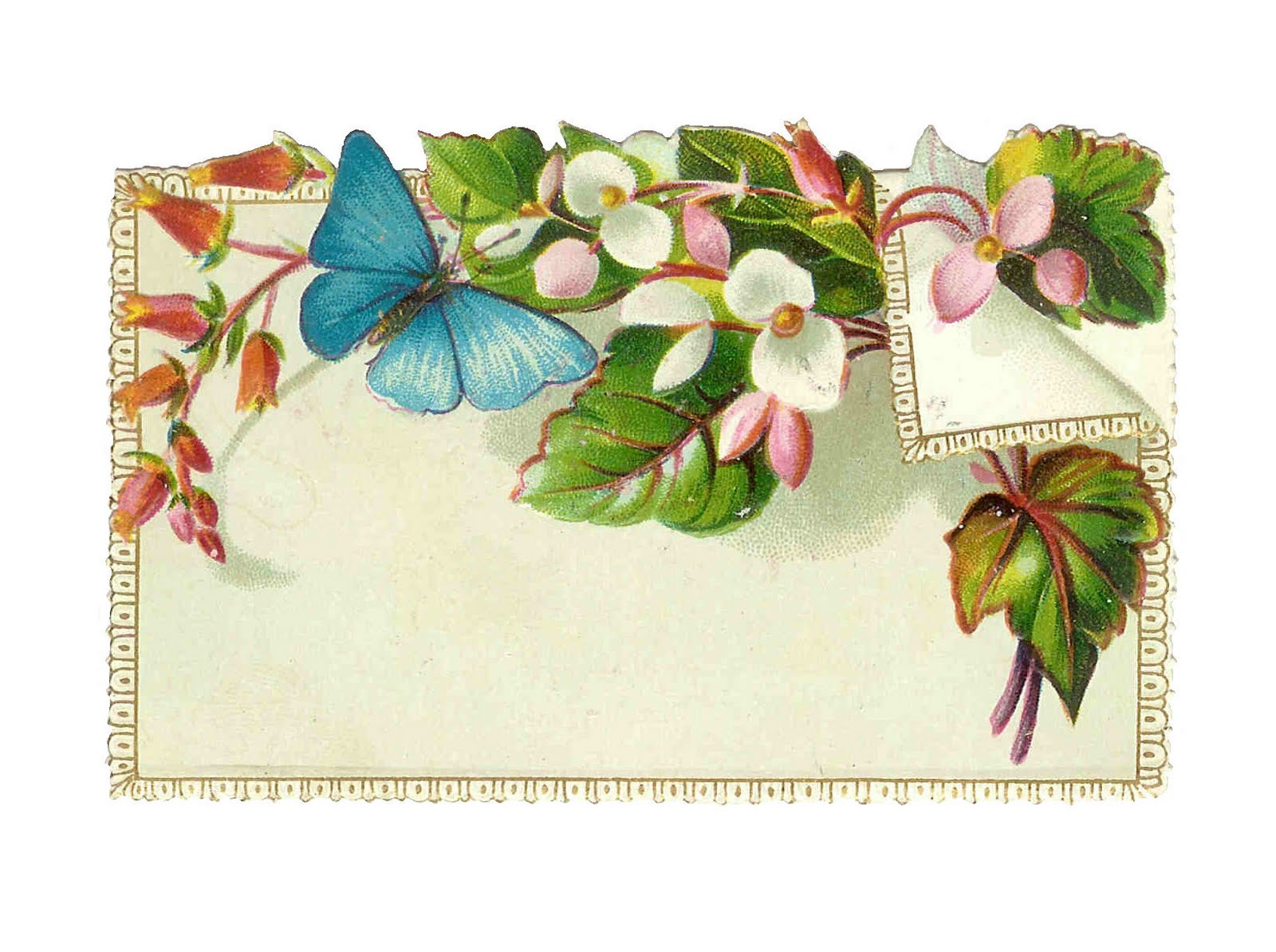 Free antique clip art antique note card ephemera with butterfly