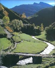 Caminiños nos Ancares. Lugo