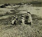 Las excavaciones en 1950