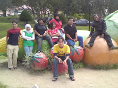at cameron highland