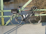 Trusty steed on Van Zile Bridge