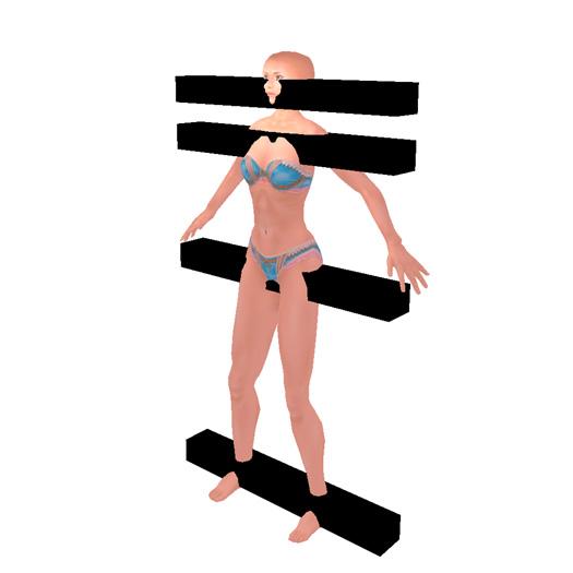 身体と頭の向きを調べるため基準となるプリムを配置