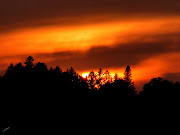Sunset at Madeira Beach, Florida: (orange sunset over trees in michigamme)