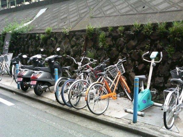 http://4.bp.blogspot.com/_LK3Jc8YZXjs/S6nurSuzOqI/AAAAAAAAH10/GfMglXAF1H0/s1600/only-in-japan-19.jpg