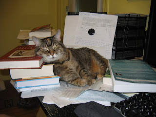Cat leaning on book pile