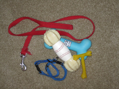 A pile of puppy supplies is lying on a white carpet. It includes a slightly frayed thin red nylon leash, two small blue nylon collars, a light blue rubber bone toy from Old Navy, a small yellow T shaped nylabone toy, and a larger nylabone that has two thick ends and the middle is white with a red stitching design like a baseball.