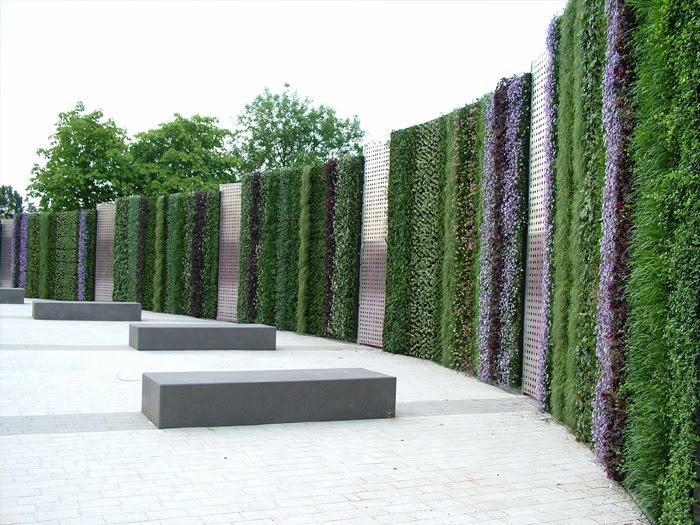 bluestem nursery living walls or vertical gardens
