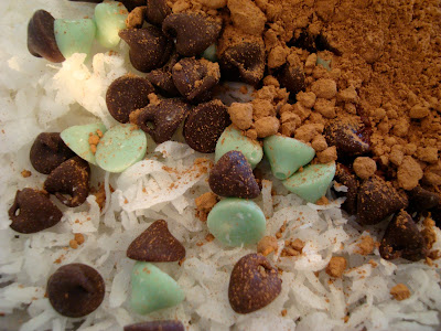 Ingredients for No Bake Vegan Mint Chocolate Chip Coconut Snowballs