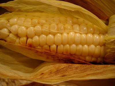 Open corn showing cob and kernels