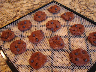 Raw Vegan Chocolate Chocolate-Chip Cookies on dehydrator tray