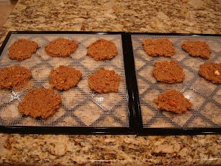 Finished Raw Vegan Apple Carrot (Pan)Cakes on dehydrator trays