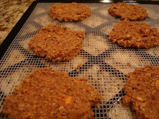Finished Raw Vegan Apple Carrot (Pan)Cakes on dehydrator tray