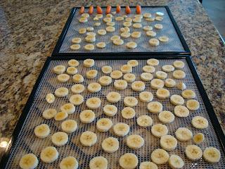 Sliced bananas on dehydrator trays