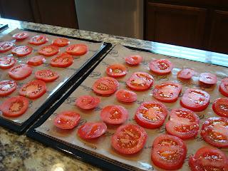 Sliced Tomatoes on dehydrator trays