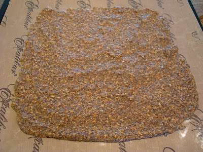 Seeds Only Crackers after coming out of dehydrator on tray