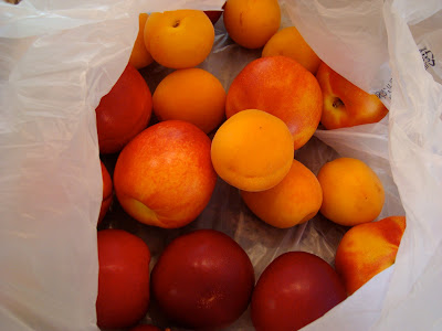 Peaches, nectarines, apricots and plums in bag