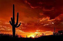 Tucson Az, Sunset