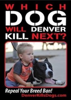Denver Kills Dogs