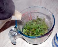 making blackberry leaf tea