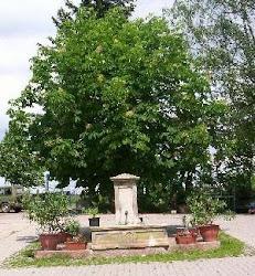 Heidebrunnnenhof Oberotterbach