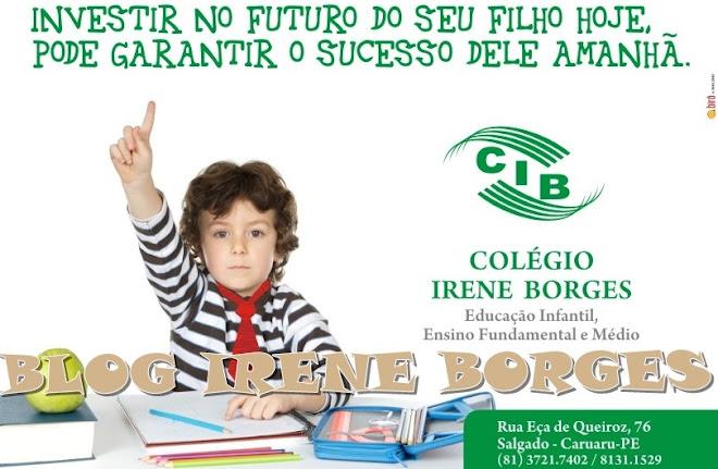 COLÉGIO IRENE BORGES