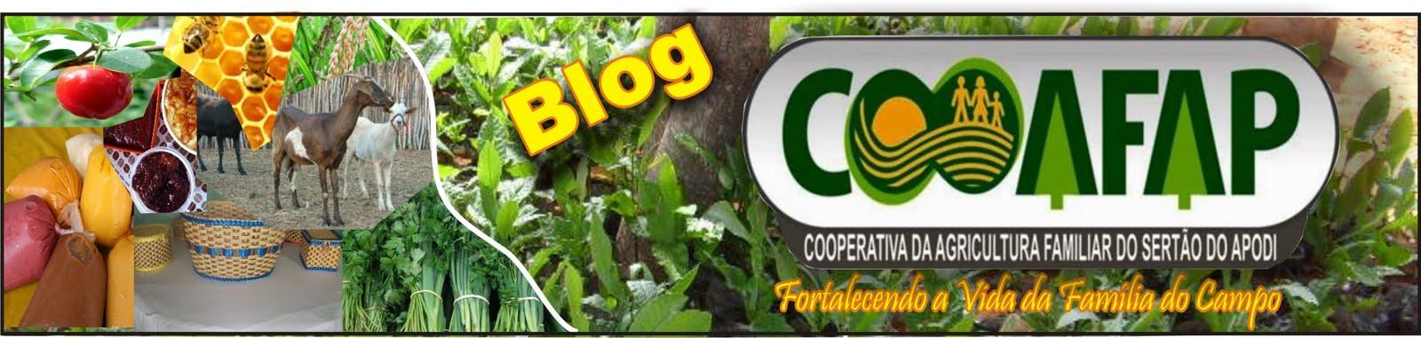 Cooperativa da Agricultura Familiar de Apodi