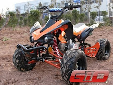 Gio Rebel 110cc ATV