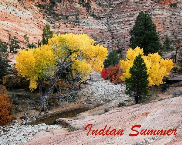 Indian Summer Native American Art