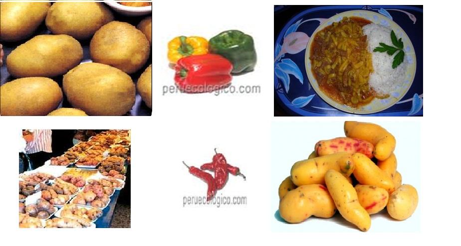 alimentos peruanos.