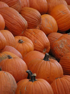 pumpkins austin copyright kerry dexter