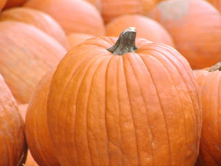 pumpkins tlh copyright kerry dexter
