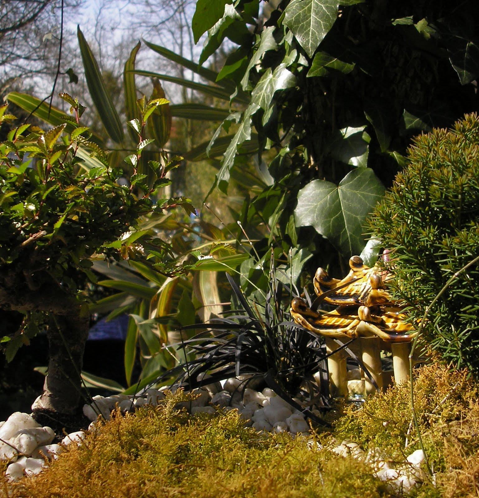 Jardins miniatures paysages intimes paysages r v s for Jardinerie des jardins