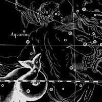 acuario constelacion