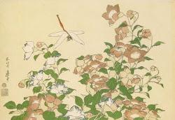 Campanillas y libélula