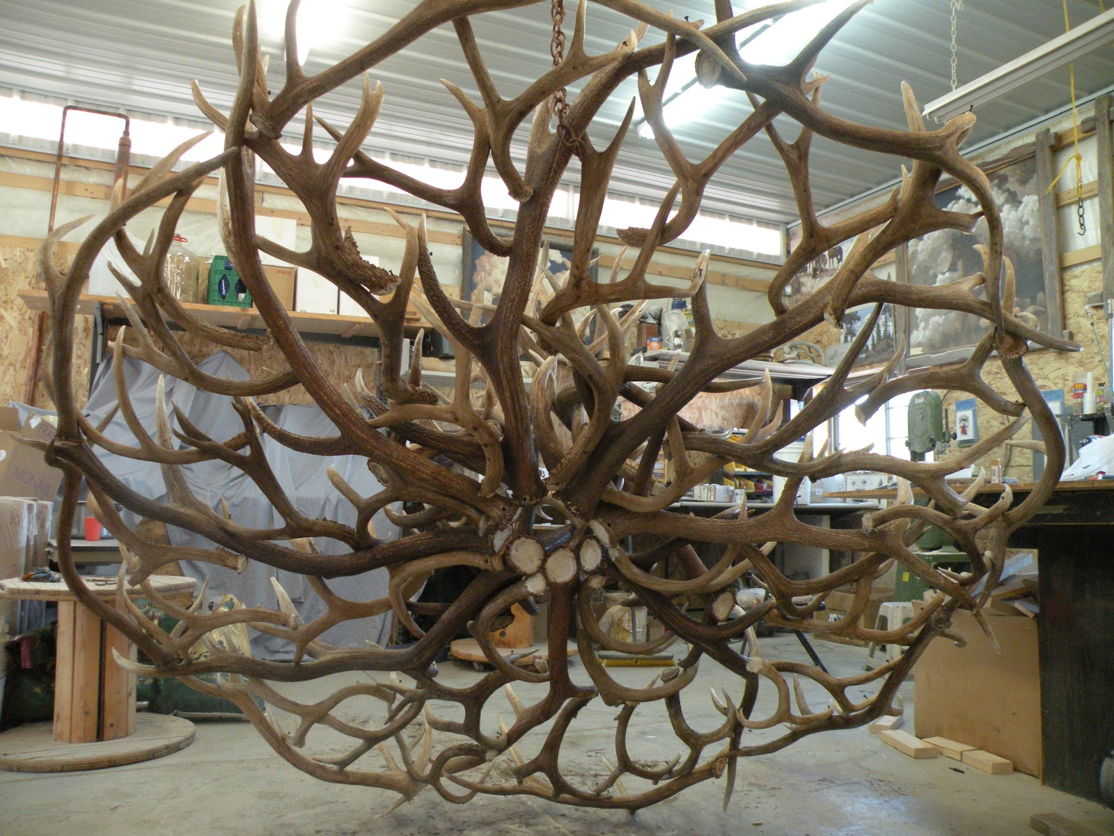 The Peak Antler Company: You Dream it! We Build It!