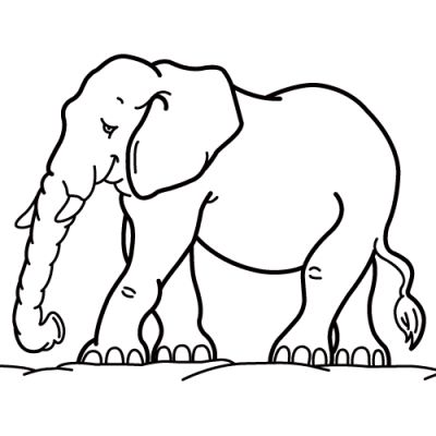 Online Headlines Magazine Free Printable Coloring Pages Elephant Creation