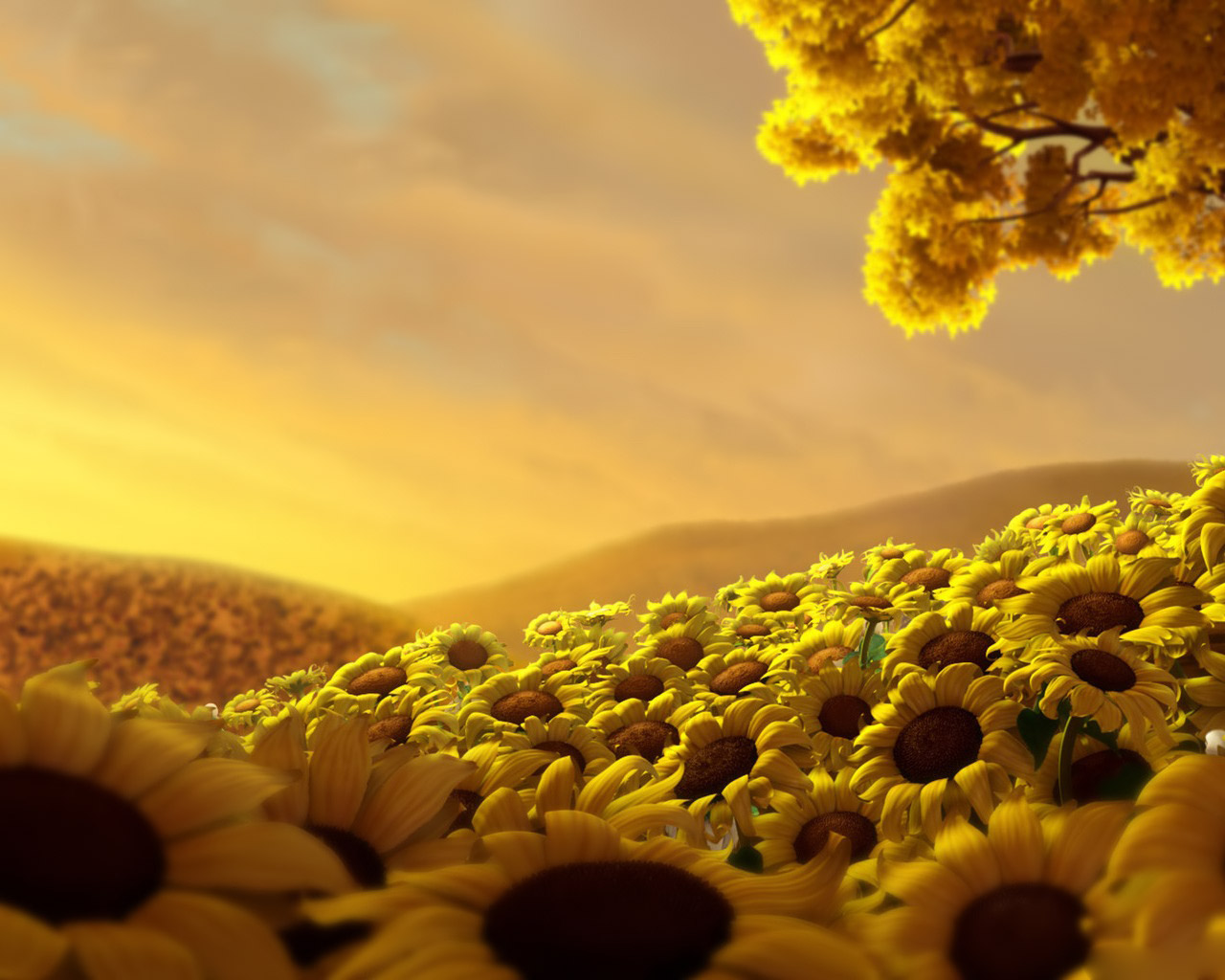 http://4.bp.blogspot.com/_LYSAqYAZ1do/TQrww6EoGRI/AAAAAAAAAH8/2mJkl0ZyTjc/s1600/Sunflowers_meadow_-_digital_3d_wallpaper.jpg